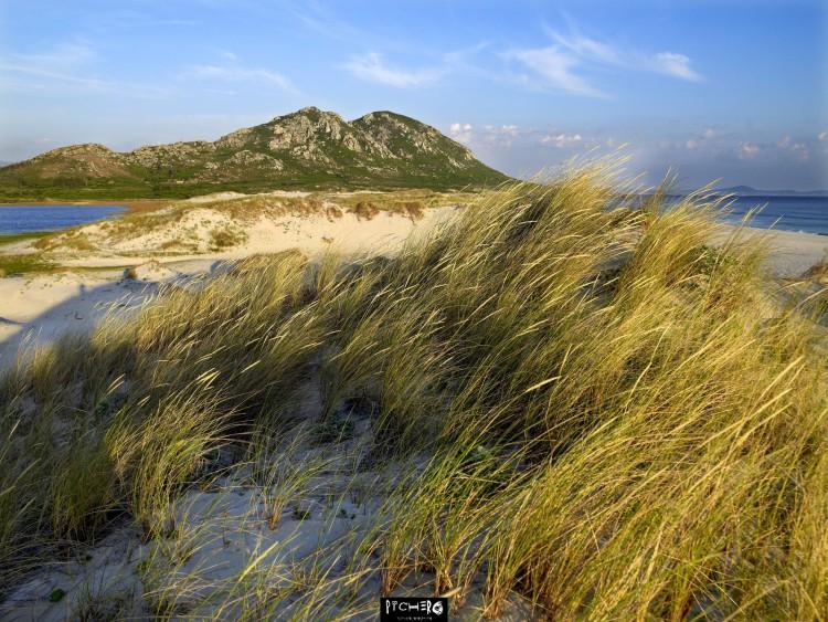 Monte Louro